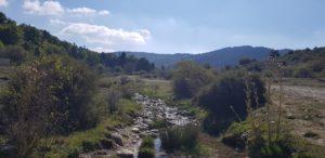 Ein Bergbach im Ossa