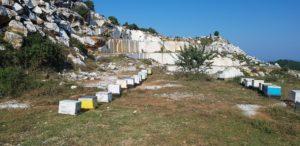 Bienstöcke im Marmortagebau