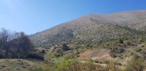 Landschaft zum Jodeln