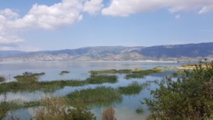 Der in Teilen wiederentstandene See