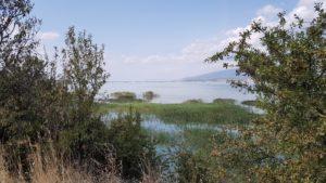 So sieht der rekonstruierte See heute aus