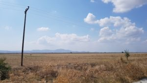 Jenseits des Damms: der trockengelegte Seegrund der Limni KarlaDer Tr