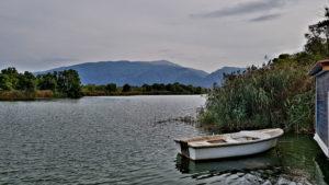 Viele Freizeitfischer siedeln an den Ufern der Flussarme